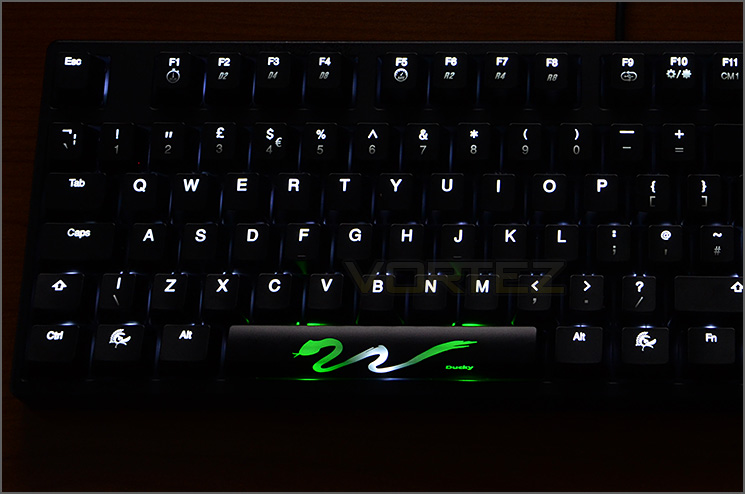 Ducky Shine 3 White Led